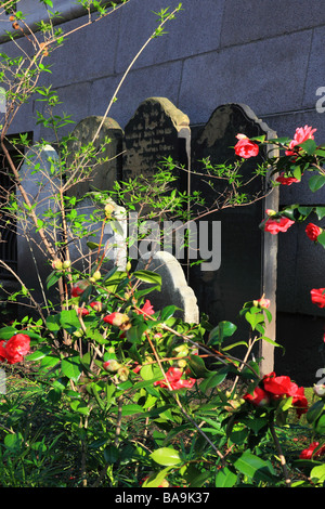 Graves in the Postman Park [City of London] England - Stock Photo