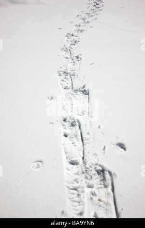 Snow shoe tracks in fresh snow along The Million Dollar Highway western Colorado between Silverton and Ouray - Stock Photo