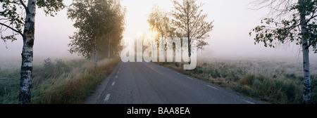Road amid grassland at sunrise - Stock Photo
