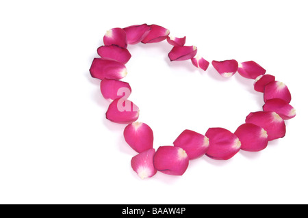 Heart shaped pattern of red rose petals - Stock Photo
