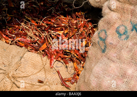 Dried red chili peppers in sack for sale in Bazaar Road, Mattancherry,  Cochin or Kochi,  Kerala, India - Stock Photo