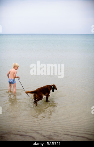 A boy and a dog bathing in the sea, Gotland, Sweden. - Stock Photo
