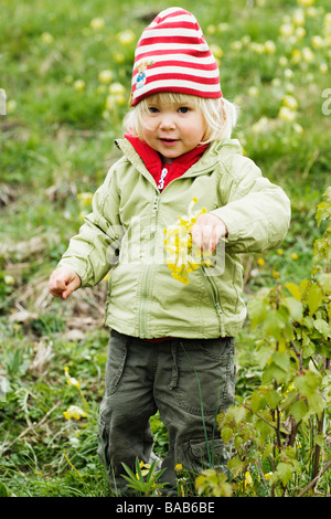 Child picking cowslips, Sweden. - Stock Photo