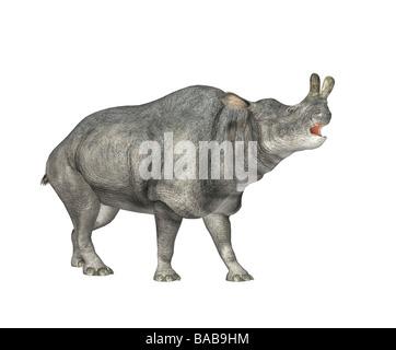 Dinosaurier Diceratus / dinosaur Diceratus - Stock Photo