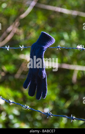 A lost woolen, blue glove left on a barbed wire fence. - Stock Photo