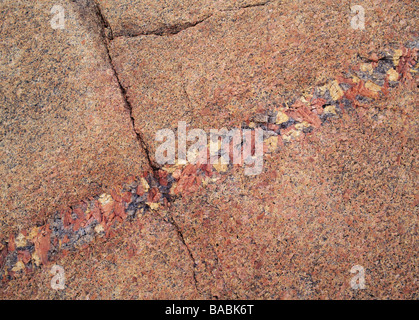 Crevice on rock close-up - Stock Photo