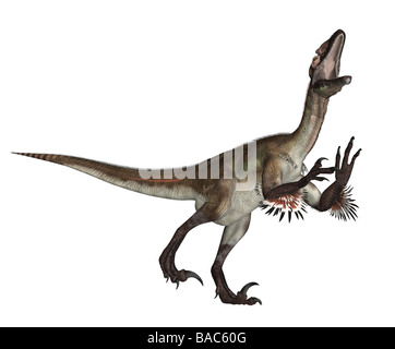 dinosaur Utahraptor - Stock Photo