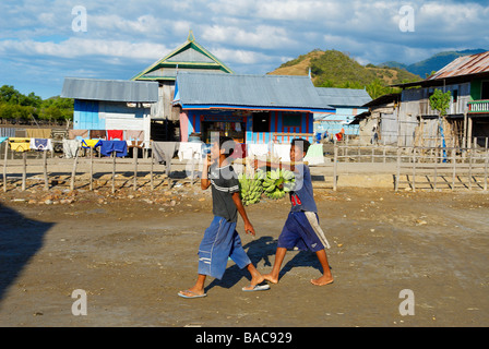 Indonesia, Flores, Sunda Islands, Riung, north of the island, youngs carrying a bunch of bananas - Stock Photo