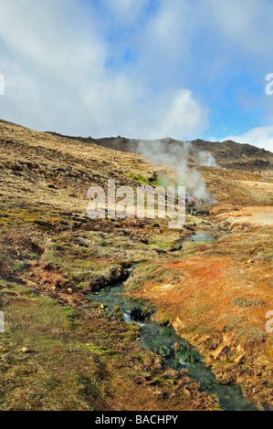 A portrait of stream waters, coloured green, flowing from the hot springs at Reykjadalur, near Hveragerdi, South - Stock Photo