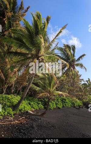 Black sand beach in Hana Bay on the northeast coast of Maui, in the town of Hana. - Stock Photo