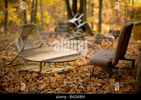 Abandoned furniture in the woods