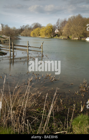 River Thames between Little Wittenham and Clifton Hampden Oxfordshire Uk - Stock Photo