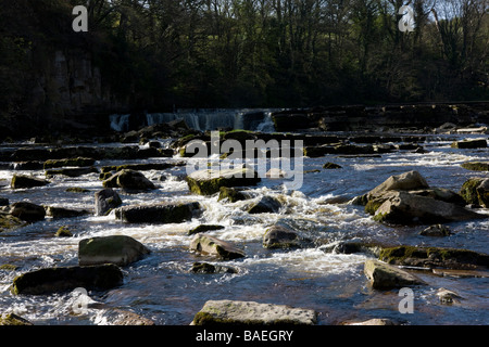 Waterfall on the River Swale Richmond North Yorkshire England UK - Stock Photo