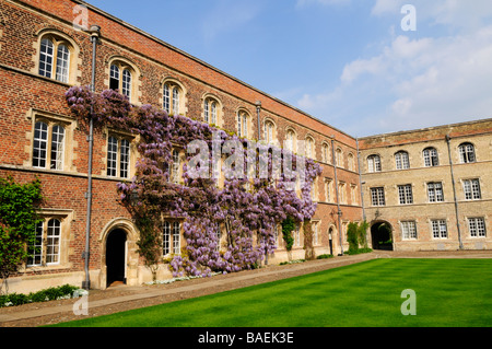 First Court at Jesus College,Cambridge, England, uk - Stock Photo
