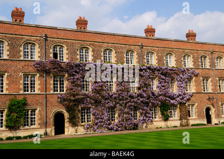 First Court Jesus College cambridge England Uk - Stock Photo