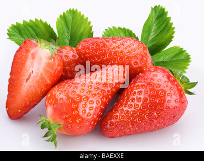 Berries of strawberry on a white background - Stock Photo