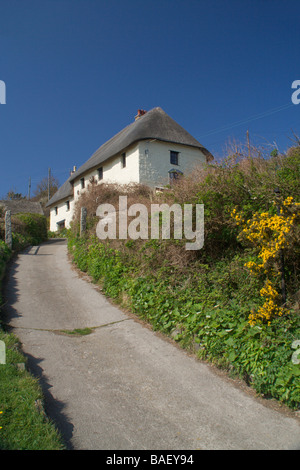 Thatch cottage in Church Cove, near the Lizard, South Cornwall Coast, England - Stock Photo