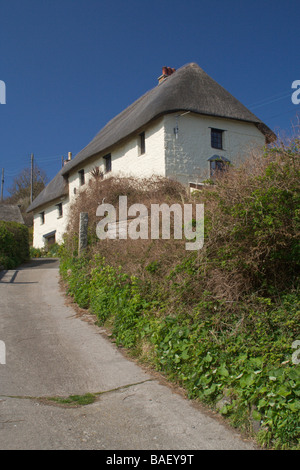 Thatch cottage in Church Cove, near The Lizard, Cornwall, England - Stock Photo