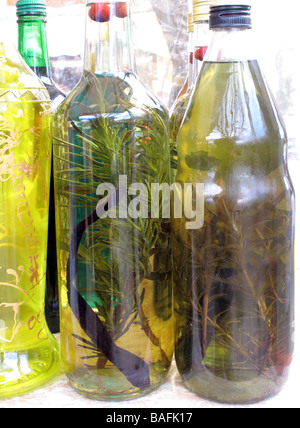 Bottles of olive oil with herbs home made for food preparation and or medicine Dalmatia Croatia - Stock Photo