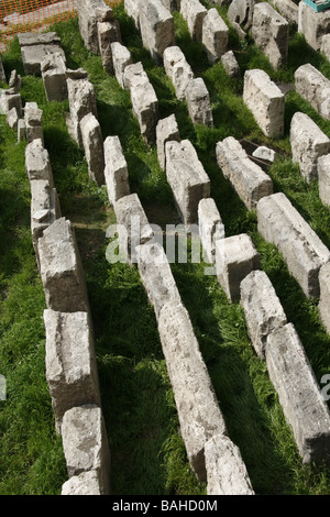 archaeologist cleaning ancient roman relics in the largo argentina sacred area in rome - Stock Photo