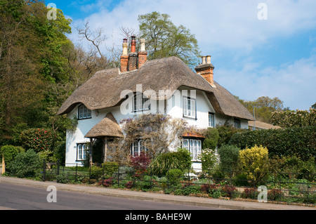 Beehive Cottage at Swan Green Lyndhurst in the New Forest National Park Hampshire England - Stock Photo