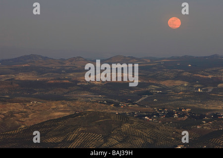Moon rise after sunset over Olive Groves and the City of Jaen Province of Jaen Andalusia Andalucia Spain Europe - Stock Photo