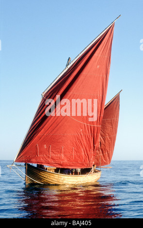 Sailing a Beer lugger boat Devon England UK Europe - Stock Photo