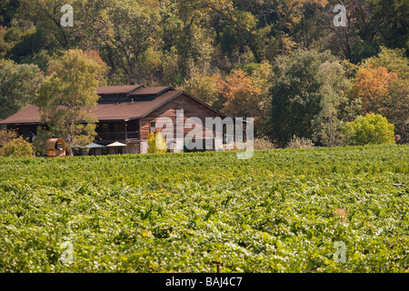 William Harrison Winery and vineyard Napa Valley California United States of America - Stock Photo