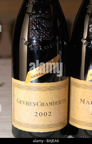 bottle with moulded relief on the neck 2002 gevrey-chambertin cote de nuits burgundy france - Stock Photo
