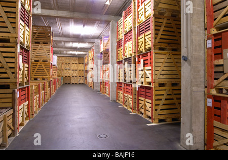 bottles stored in wooden crates f e trimbach ribeauville alsace france - Stock Photo