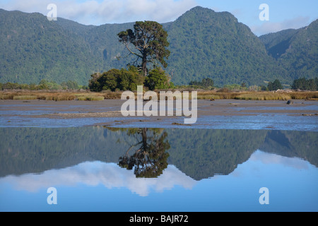 Collingwood Estuary at Low Tide New Zealand - Stock Photo
