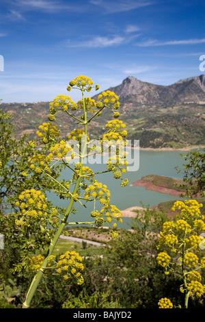 Dam in the White Village of Zahara de la Sierra Cádiz Andalusia Spain - Stock Photo