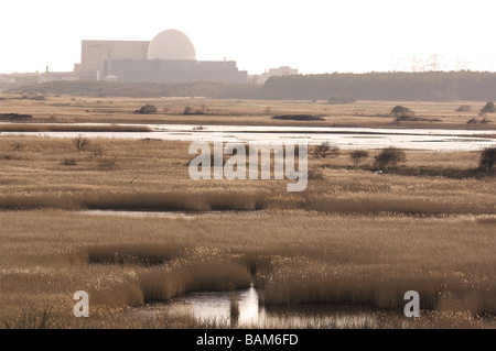 Minsmere RSPB reserve showing Sizewell nuclear power station in distance Suffolk UK - Stock Photo