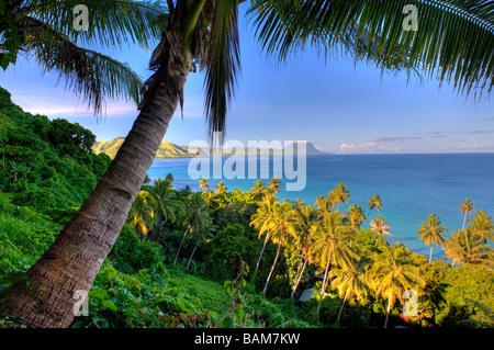 Palmy Beach of Kadavu Island Fiji - Stock Photo