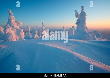 Finland, Lapland Province, Kuusamo, ski Ruka station, taiga - Stock Photo