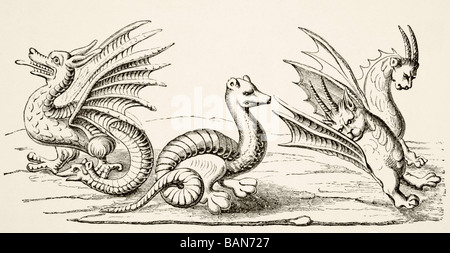 Dragons.  After miniatures in 14th century Book of the Marvels of the World. - Stock Photo