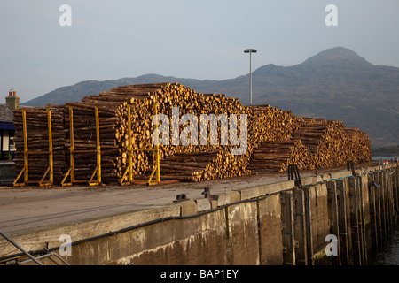 Scottish Tree Logging & Timber _Stacked Timber on Quayside at the Kyle of Lochalsh,  Isle of Skye in the Highlands - Stock Photo