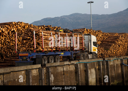 Scottish Tree Logging & Timber Industry.   Kyle of Lochalsh,  Isle of Skye in the Highlands Scotland - - Stock Photo