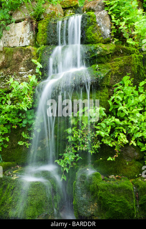 Cascading water fall over lush moss within the grounds of Ness Botanical Gardens, Ness, Cheshire, UK - Stock Photo