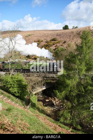 Steam Locomotive 60163 Tornado seen at Water Ark on the North York Moors railway, England, UK - Stock Photo