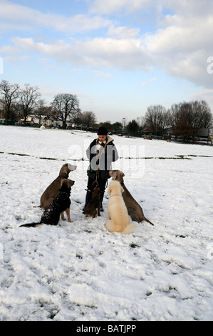 Professional dog walker with five dogs sitting in snow waiting to be fed a treat,Springfield Park Hackney,London - Stock Photo