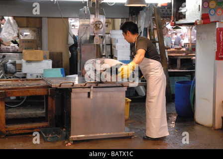 Worker in the Tsukiji fish market Tokyo Japan prepare frozen tuna fish - Stock Photo