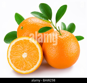 Oranges with leaves on a white background - Stock Photo