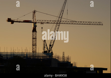 Tower Cranes silhouetted in sunrise - Stock Photo