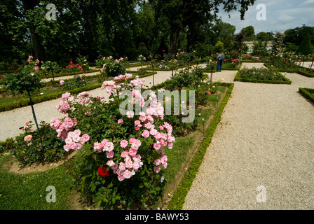 France, Paris, Bois de Boulogne, Parc de Bagatelle, rose garden and orangery - Stock Photo