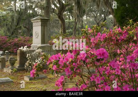 Bonaventure Cemetery in Savannah Georgia - Stock Photo