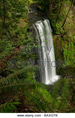 Victor Falls, located near Bonney Lake, Washington, plunges more than a hundred feet into a gorge that borders Fennel - Stock Photo