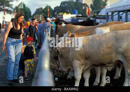 Woman And Boy With Cattle At The Popular Sydney Royal Easter Show In Olympic Park