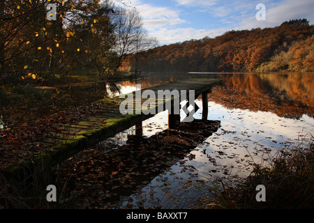 An old jetty on a river. Sunlit autumn trees on the far bank. Evening sky reflected in the water.