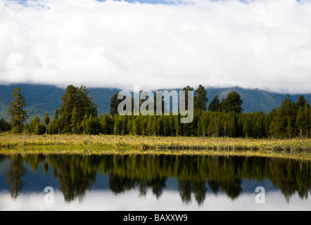 Dramtic reflections on Lake Matheson near Fox Glacier South Island New Zealand - Stock Photo